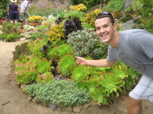 San Diego succulent photobomb