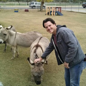 burro in petting zoo